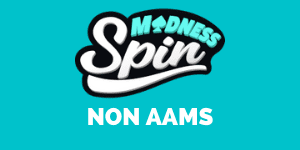 Spin Madness Casino